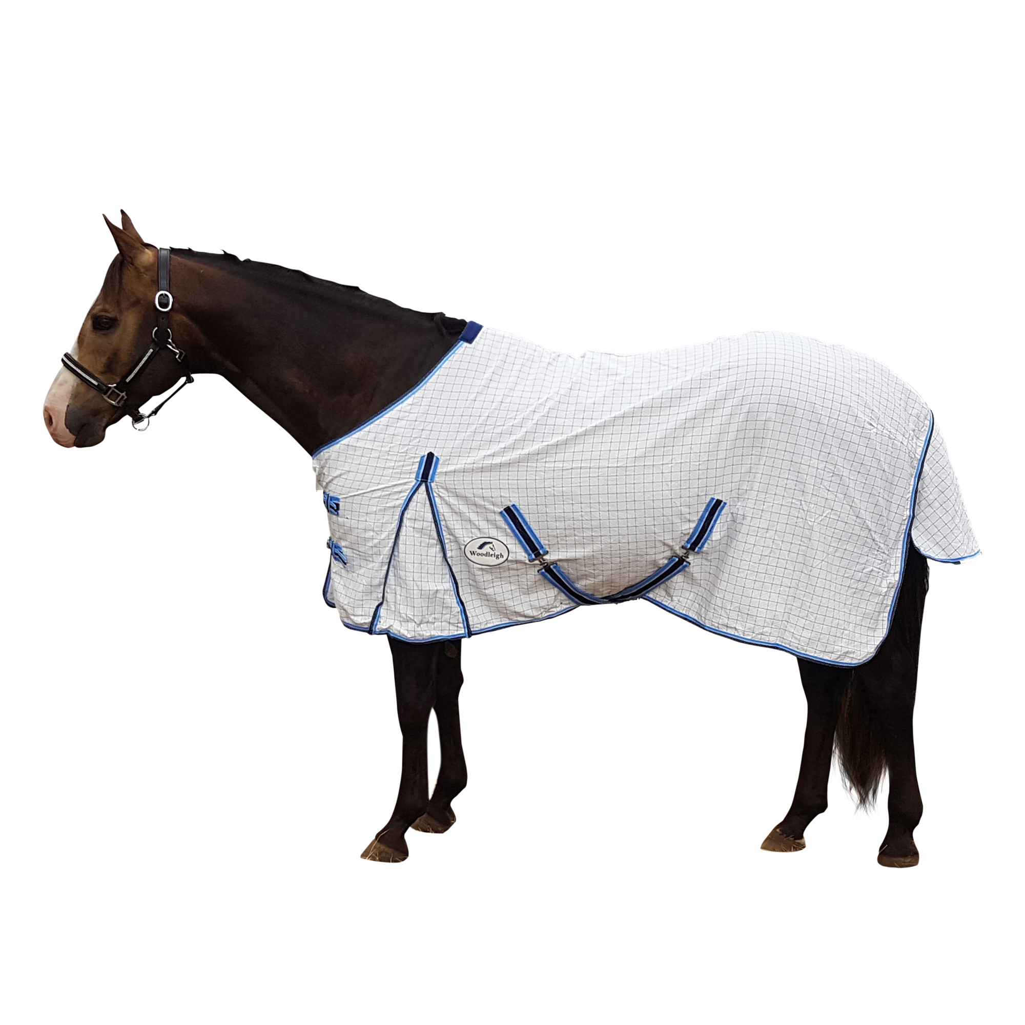 Cotton Ripstop Horse Rug Blue Woodleigh Horse Wear