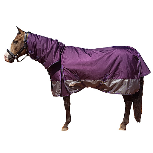 Winter Horse Rugs Afterpay Taraba Home Review